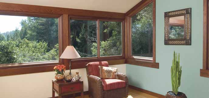 Picture/Combination Replacement Windows